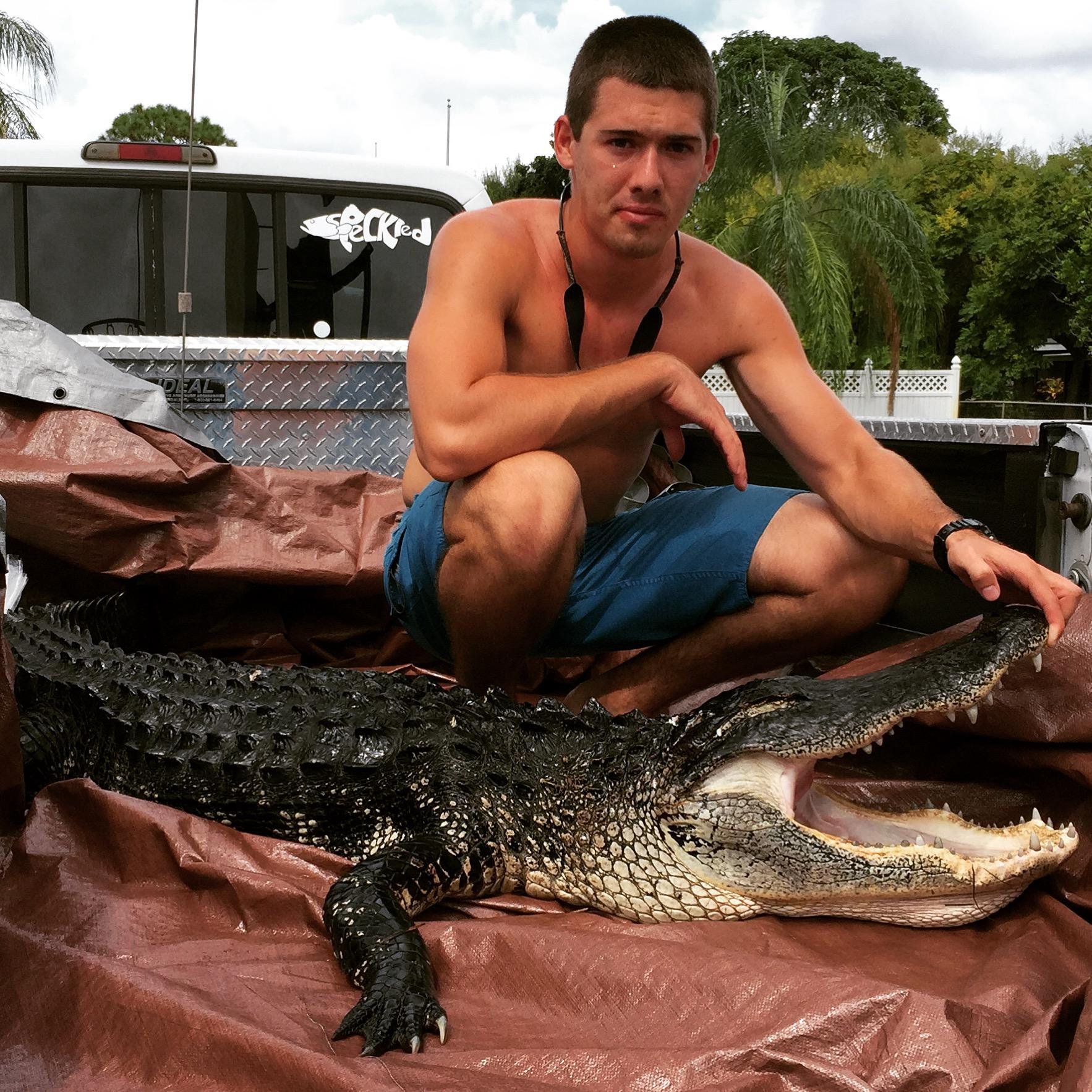 florida alligator hunting
